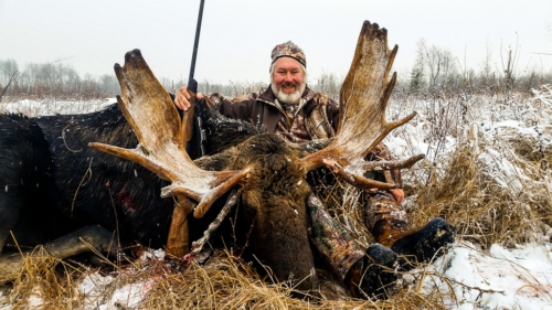Alberta moose hunting in Canada with Alpine Outfitters